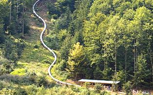 Rutsche Baumkronenweg Waldkirch