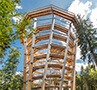 Large Slides – Tree Top Walk Bad Wildbad